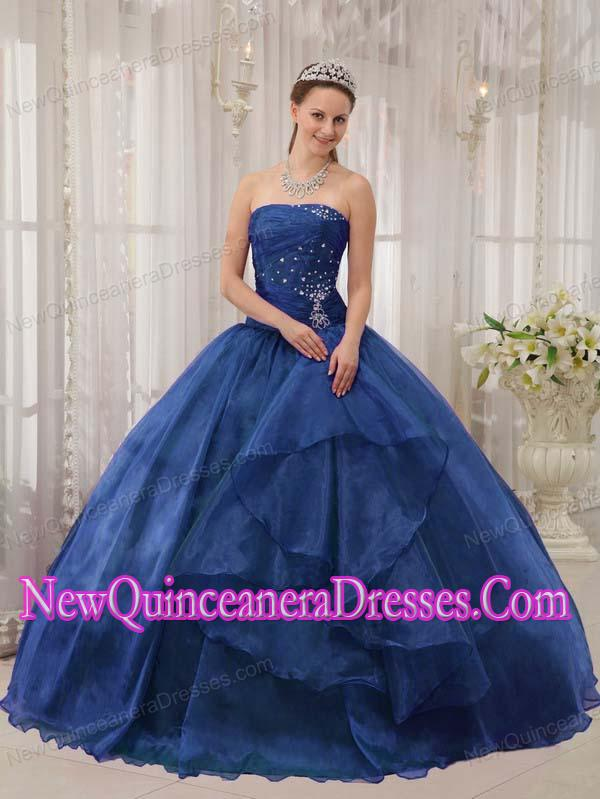 Plus Size Blue Ball Gown Strapless Floor-length Organza with Beading ...