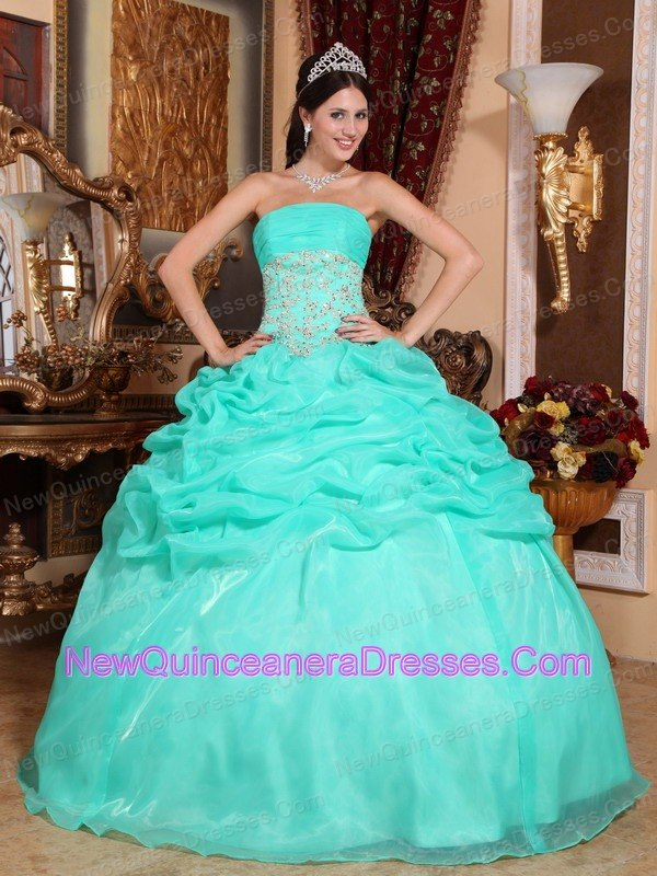 tumblr Strapless Quince Dress