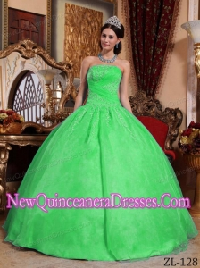 2014 Green Ball Gown Strapless Organza Appliques Quinceanera Dress