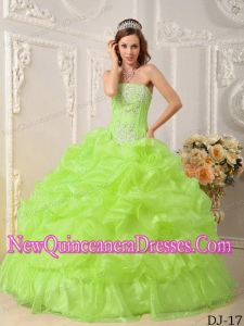 In Yellow Green Ball Gown Floor-length Organza Beading 2014 Quinceanera Dress