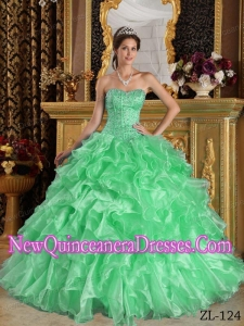 Ball Gown Sweetheart Ruffles Organza Custom Made Quinceanera Dresses in Apple Green