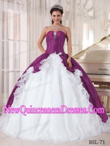 A Colourful Sweetheart Organza and Taffeta With Beading New Style Quinceanera Dress