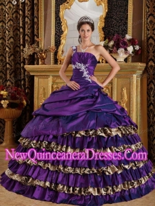 Dark Purple One Shoulder Taffeta and Leopard Appliques Fashionable Quinceanera Dress