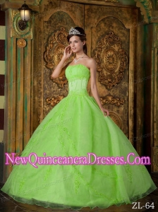 Spring Green Ball Gown Strapless Floor-length Appliques Organza Quinceanera Dress