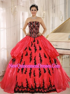 Luxurious Embroidery Ball Gown Quinceanera Dress in Red