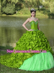 Perfect Appliques and Pick-ups Spring Green Brush Train Exquisite Style For 2013 Quinceanera Dress
