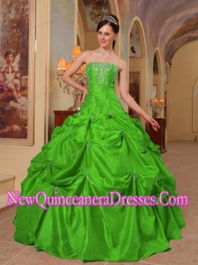 Plus Size Green Ball Gown Strapless Floor-length Taffeta Beading and Embroidery Quinceanera Dresses