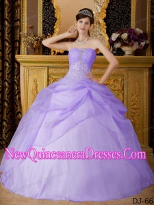 Plus Size Lilac Ball Gown Strapless Floor-length Organza with Beading Quinceanera Dresses