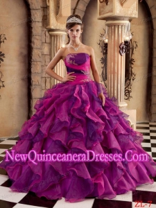 Plus Size Multi-color Ball Gown Strapless Floor-length Organza with Ruffles Quinceanera Dresses