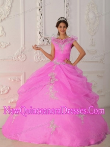 Plus Size Pink Ball Gown V-neck Floor-length Taffeta and Organza Appliques with Beading Quinceanera Dresses