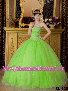 Organza Spring Green Strapless Floor-length Beading Puffy Quinceanera Dress