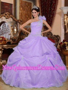 Plus Size Lilac Ball Gown One Shoulder Floor-length Organza with Appliques Quinceanera Dresses