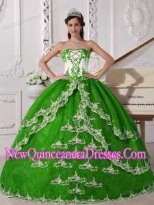 Plus Size Spring Green and White Ball Gown Strapless Floor-length Organza with Appliques Quinceanera Dresses