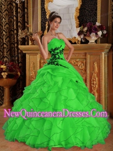 Popular Green Ball Gown Sweetheart Floor-length Organza Appliques Quinceanera Gowns