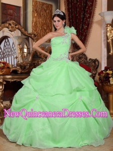 Green Ball Gown One Shoulder Organza Puffy Sweet 16 Gowns with Appliques