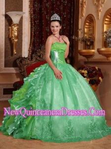 Ball Gown Strapless Green Ruffles Embroidery Classical Quinceanera Dresses