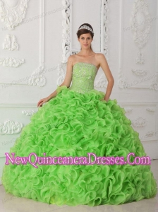 Organza Spring Green Ball Gown Strapless Puffy Sweet 16 Gowns with Beading