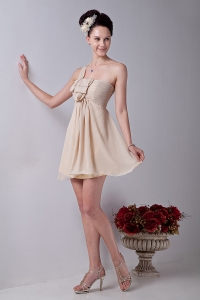 Champagne A-line One Shouldle Mini-length Chiffon Ruch Dama Dresses for Quinceanera