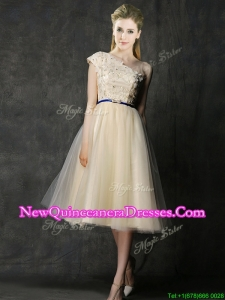 Elegant One Shoulder Sashes and Appliques Damas Dress in Champagne