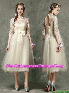 See Through High Neck Half Sleeves Dama Dress with Lace and Bowknot