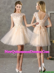 Classical Bateau Cap Sleeves Lace Dama Dress in Champagne