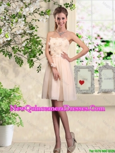 Popular Strapless Laced Dama Dresses with Appliques
