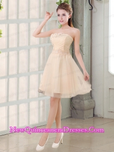 Champagne A Line Strapless Appliques Dama Dresses