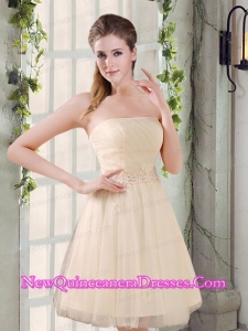 Strapless Appliques 2015 New Dama Dresses in Champagne