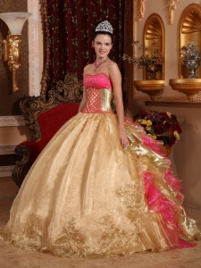 Popular Gold Quinceanera Dress Strapless Organza Embroidery Ball Gown