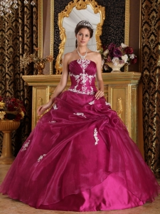 Brand New Quinceanera Dress Strapless Organza and Satin Appliques Ball Gown