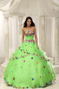 Spring Green Ball Gown 2015 Quninceaera Gown For Custom Made Appliques Decorate Bodice