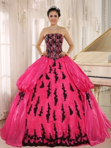 Hot Pink 2015 New Arrival Strapless Embroidery Decorate For Quinceanera Dress