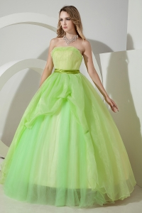Light Green Sweet 16 Dress A-line / Princess Strapless Floor-length Organza