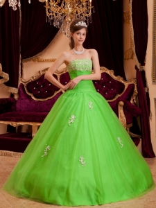 Simple Spring Green Quinceanera Dress Strapless Appliques Tulle A-line / Princess