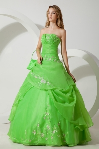 Spring Green Sweet 16 Dress Embroidery Ball Gown Strapless Floor-length Organza
