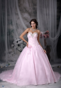 Baby Pink Hand Made Folwers and Ruched Beading Bodice In Indianapolis Court Train Dama Dresses for Quinceanera