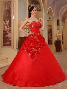 Exclusive Red Quinceanera Dress Sweetheart Organza Handle Flowers Ball Gown