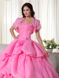 6ea3da3e4c8 Rose Pink Ball Gown Strapless Floor-length Organza Hand Flowers Quinceanera  Dress. triumph. Loading zoom. This is a finished dress tailored and  photographed ...