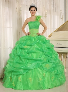 2015 Spring Green One Shoulder Quinceaners Dress With Embroidery and Pick-ups Decorate