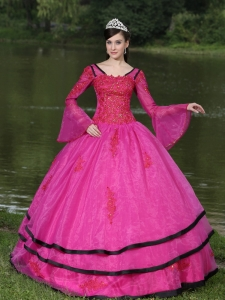 The Most Popular Long Sleeves Appliques Decorate Fushsia Quinceanera Dress With V-neck
