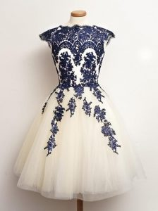 Fantastic Blue And White Scalloped Neckline Appliques Dama Dress for Quinceanera Sleeveless Lace Up