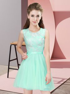 New Arrival Apple Green Scoop Neckline Lace Quinceanera Court of Honor Dress Sleeveless Side Zipper